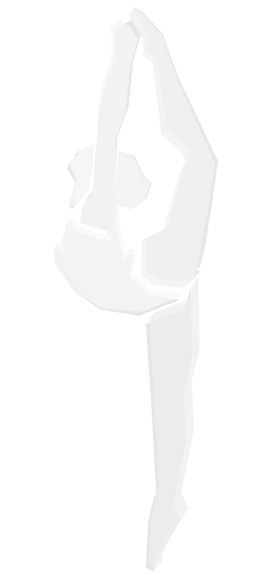 image_logo_trans2